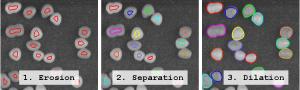 blob-separation1